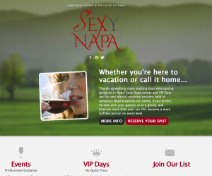 wine logo design services displayed on the sexy napa website