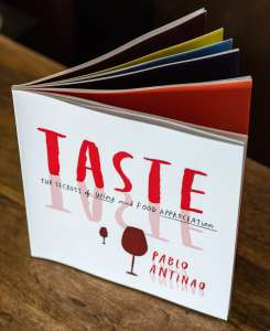 Pablo Antinao's book TASTE concept inspired our wine logo design services
