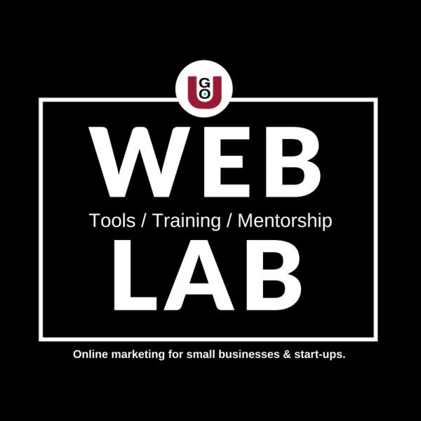 GO-U Web Lab Tools Training And Mentorship