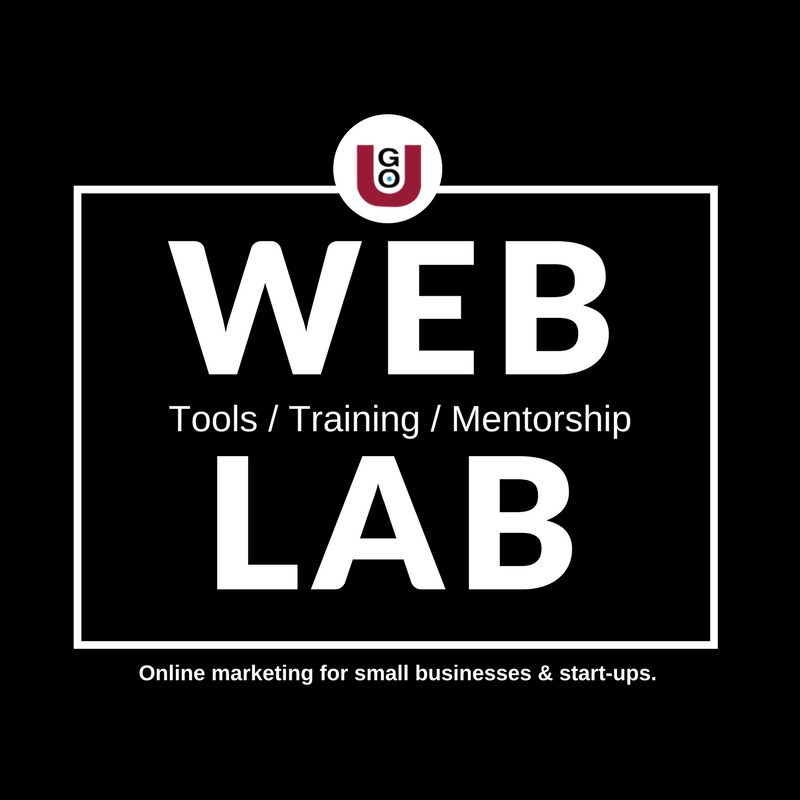 GO-U Web Lab Tools Training And Mentorship