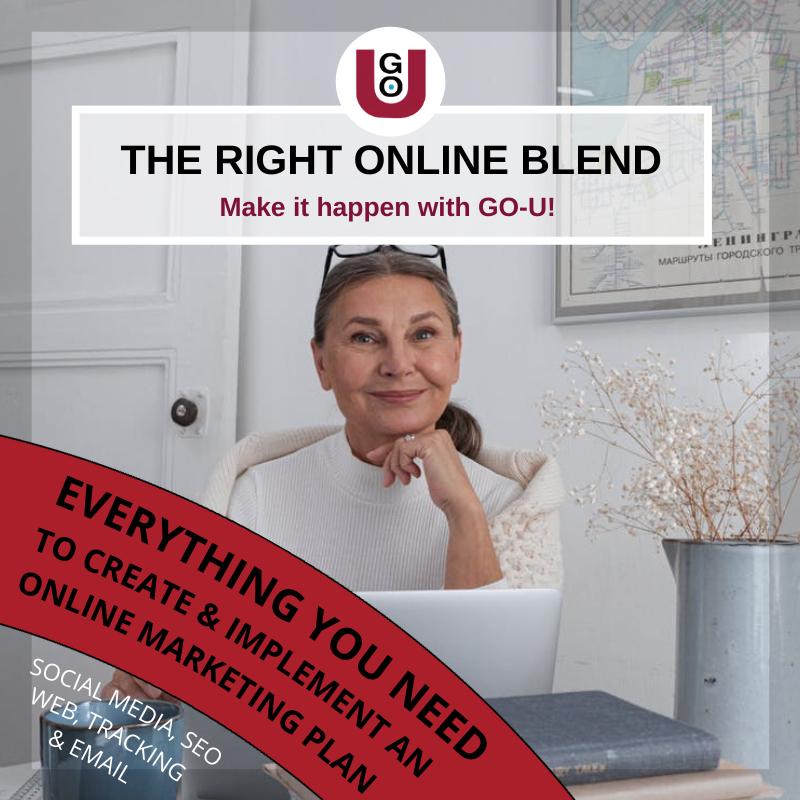 GO-U Marketing Training: The Right Online Blend